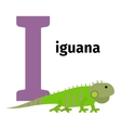 English animals zoo alphabet letter I vector image