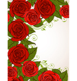 decorative background with red roses vector image