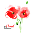 Beautiful watercolor paint red poppy vector image