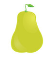 isolated pear icon vector image