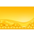 Honey background vector image vector image