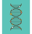 DNA schematic Icon vector image