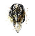 colored hand sketch walking wolf vector image