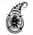 decorative silhouette of a floral paisley vector image