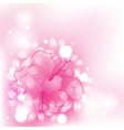 colorful background flowers vector image vector image