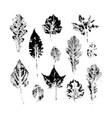 big set of autumn fall leaves ink print stamp set vector image