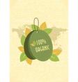 eco friendly shopping tag vector image vector image