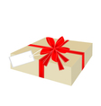 A Beautiful Gift Box with Red Ribbon and Tag vector image