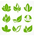Green leaf signs vector image