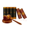Gavel and books vector image vector image