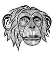 Monkey chimpanzee ape head animal vector image