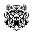 head of a lion vector image