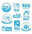 Milk labels vector image vector image
