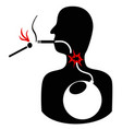 cigarette smoke bomb vector image