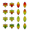 Autumn Leaf Collection vector image vector image