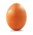 Chicken Egg vector image