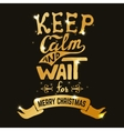 keep calm and wait for Merry Christmas Hand drawn vector image