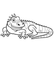 Iguana outline vector image