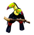 keel-billed toucans sitting on the branch vector image