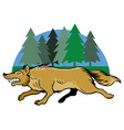 running wolf and pine trees vector image