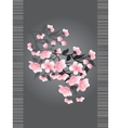 Sakura blossoms on a dark background vector image