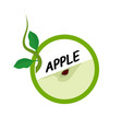 apple fruit icons flat style vector image