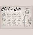 chicken hen cutting meat scheme parts brisket vector image