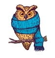 Colorful peach owl in blue scarf vector image