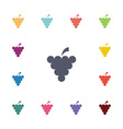 grapes flat icons set vector image