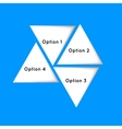 Triangles options vector image
