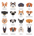 purebred dogs faces icon set vector image