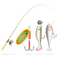 Fishing rod reel and lures vector image