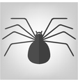 spider icon for Halloween vector image