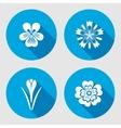 Flower set Primula viola blue poppy Crocus vector image