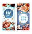 seashell banners set vector image vector image