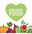 organic food healthy vegetable vector image