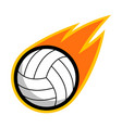 sport ball fire volleyball vector image