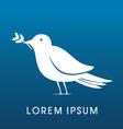 Bird Dove vector image