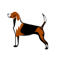 fox hound vector image