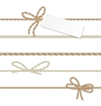 Collection of ribbons ahd bows in rope style vector image