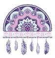 Ethnic American Indian Dream catcher vector image