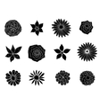 sketches of flowers vector image