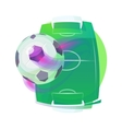 Soccer or association football ball and pitch vector image