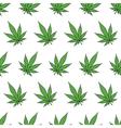 Cannabis leafs vector image