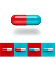 Pills in red and blue vector image