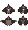 Set of funny gorilla vector image