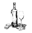Wine and oysters vector image