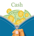 Purse and a lot of cash vector image vector image