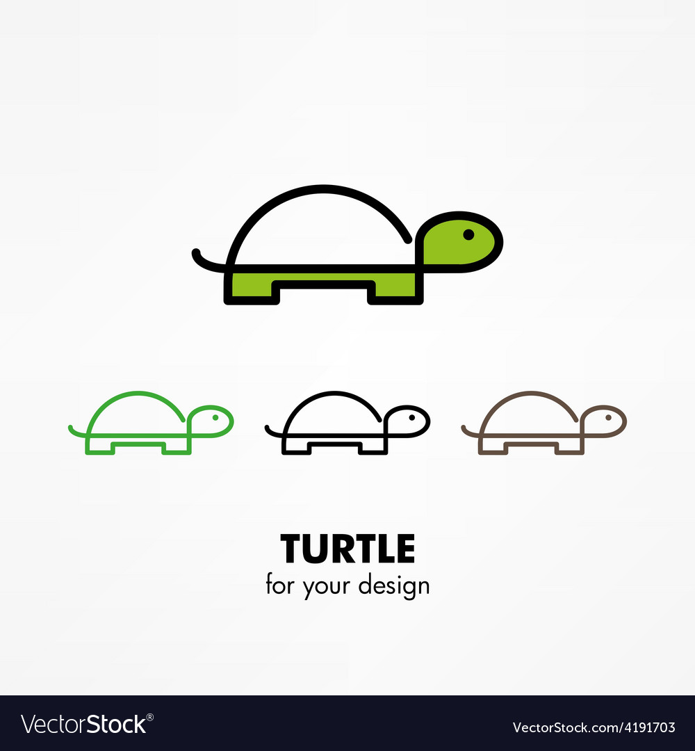 Turtle icon vector