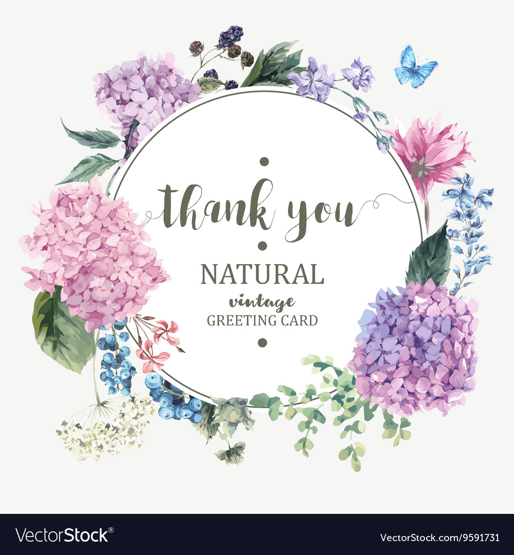 Floral greeting card with blooming hydrangea vector